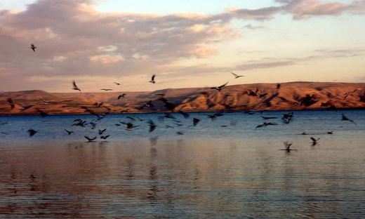 Wasser für alle: Der See Genezareth im milden Abendlicht