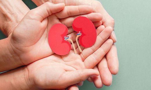 Nierengesundheit, Vorbeugen, Tag der Niere