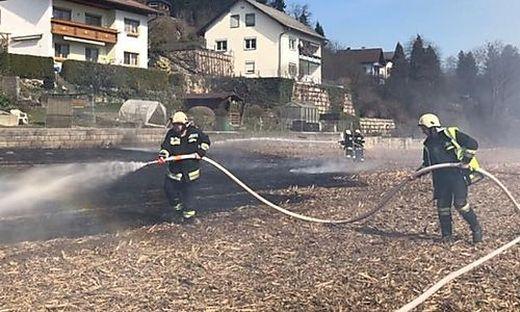 Die Freiwilligen Feuerwehren Moosburg und Kreggab löschten den Brand