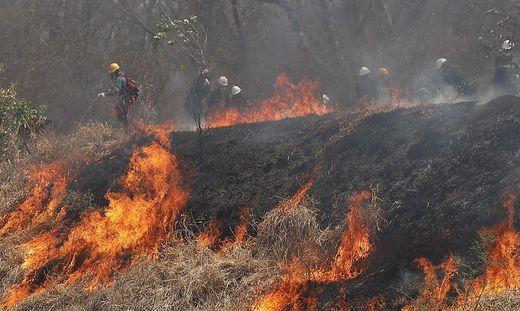 Kampf gegen das Feuer in Bolivien