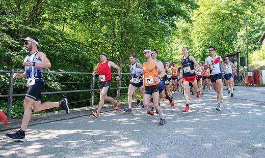 Vom Parkplatz im Weitental ging es für die Läufer über 6,4 Kilometer auf den Brucker Hochanger