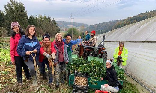 Ulli Klein (vierte von links) baut mit ihrem Mann Scott (am Traktor) und den Erntehelfern hauptsächlich altes Saatgut an