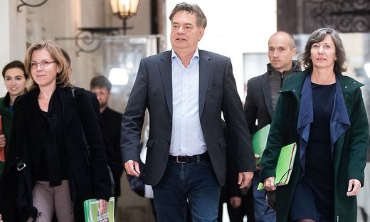 Grünen Chef Werner Kogler