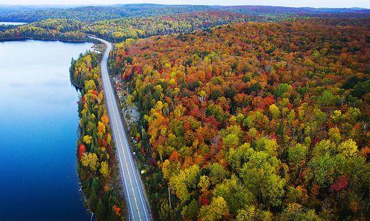 Bunte Blätterwelt in Kanada