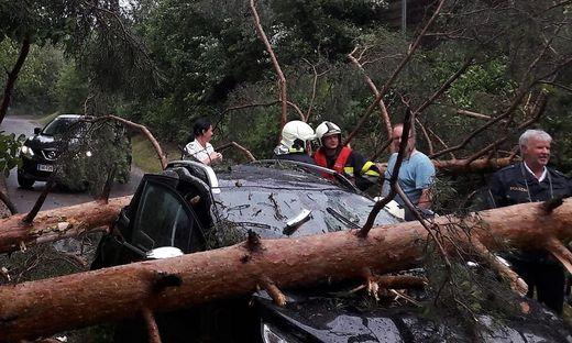 Baumstämme krachten auf Auto: Die Frau blieb wie durch ein Wunder unverletzt
