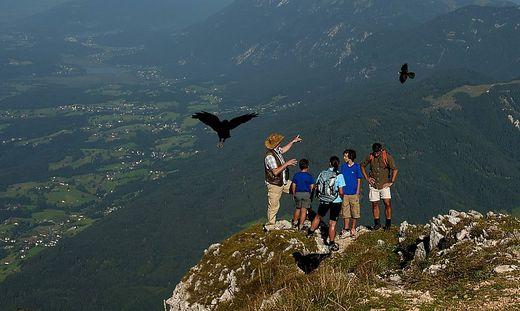 Naturpark-Ranger informierten Besucher