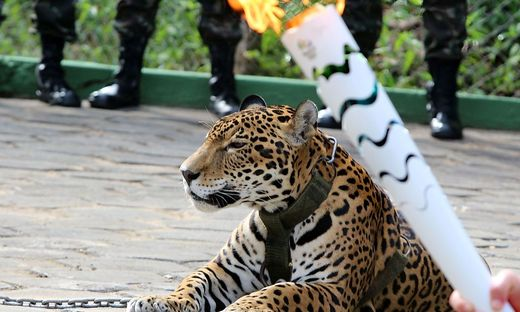 OLY-2016-RIO-OLYMPIC TORCH-JAGUAR