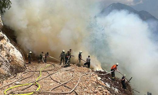 Waldbrand in Zell: Die Feuerwehrleute mussten teilweise angeseilt werden, um das Feuer im extrem steilen Wald bekämpfen zu können