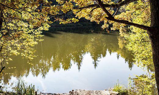 Herbst Wandern Eggerteich Villach Kärnten