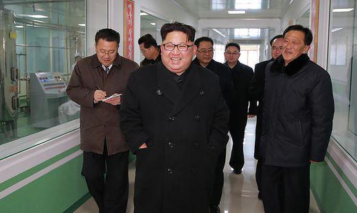 Nordkorea will Wiedervereinigung mit Süden
