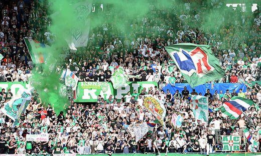 FUSSBALL TIPICO BUNDESLIGA: SK RAPID WIEN UND FC RED BULL SALZBURG