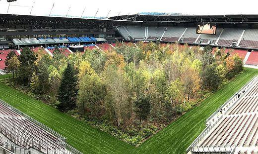 ENDE DER AUSSTELLUNG 'FOR FOREST' IM WOeRTHERSEE-STADION