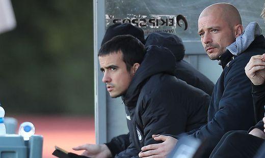 Nestor und Nikon El Maestro