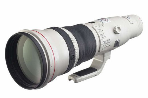 Kostet eigentlich knapp 13.000 Dollar: Canon EF 800mm f/5.6L IS USM Super Telephoto Lens