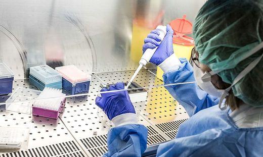 Mittels Corona-Tests wurden in Kärnten fünf Neuinfektionen festgestellt