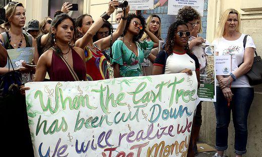 PROTESTKUNDGEBUNG 'DER AMAZONAS BRENNT - BOLSONARO LENKT!'