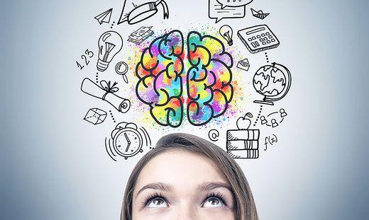 Girl s head and an education idea