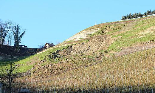 Im Dezember kam es beim Weinbauprojekt am Graßnitzberg zu einem Erdrutsch