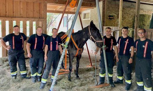 Die Feuerwehrmänner mit dem geretteten Pferd