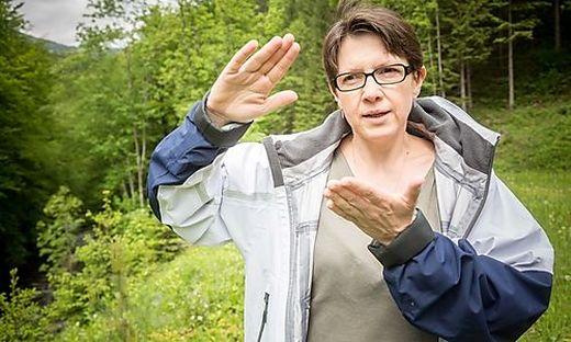 Bewirbt sich erneut: Umweltanwältin Ute Pöllinger