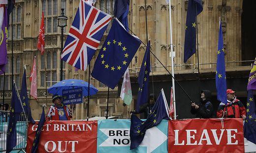 Proteste vor Westminister