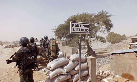 Kamerun unterstützt Nigeria im Kampf gegen die Terroristen