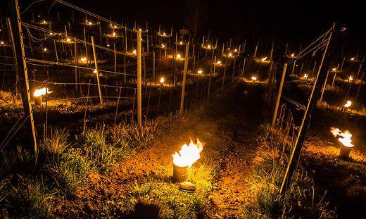 In der Nacht zündete Alexander Egger auf seinem Weinberg in Wernberg