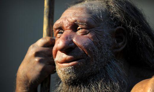 Neandertaler und moderner Mensch waren sich anatomisch sehr ähnlich