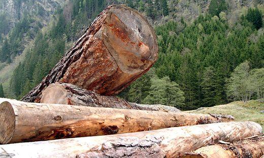 In einem Waldstück bei Innervillgraten ereignete sich der Forstunfall