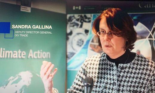 Sandra Gallina, Generaldirektorin der EU-Generaldirektion Gesundheit und Lebensmittelsicherheit