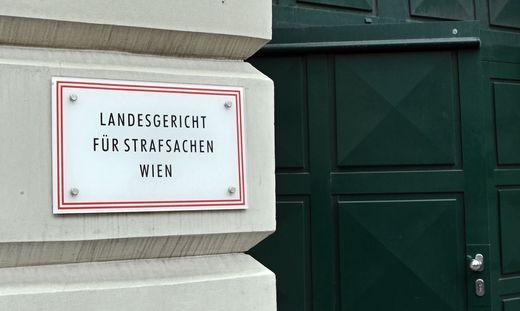 Der Fall eines psychisch Kranken wurde am Montag am Landesgericht Wien verhandelt