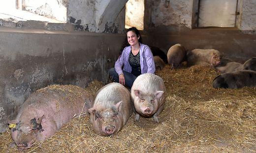 Sabrina Spielvogel mit Schweinen, die sich am Melcherhof nicht mehr fürchten, vom Besuch zum Essen getötet zu werden.