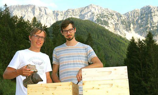 Tadej Čertov und Karl Maier sind die Erfinder der digitalen Bienenstockwaage