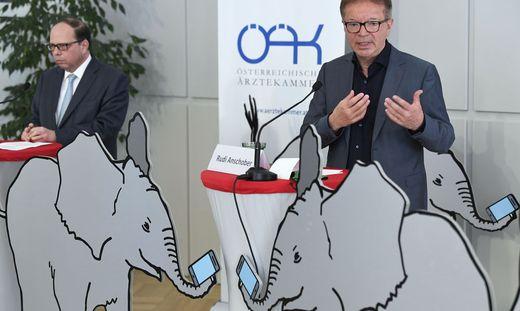 Ärztekammerpräsident Thomas Szekeres und Minister Rudolf Anschober