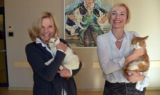 Tara Geltner (rechts) folgt Evelin Pekarek, die ehrenamtlich im Vorstand bleibt