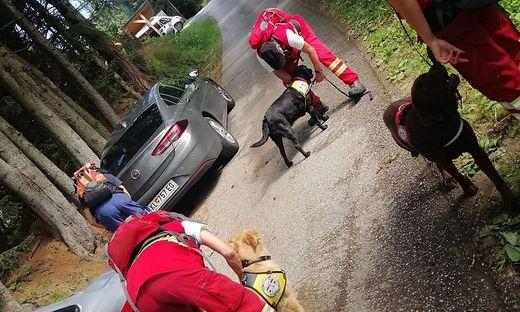 Rettungshunde sollen den Vermissten aufstöbern