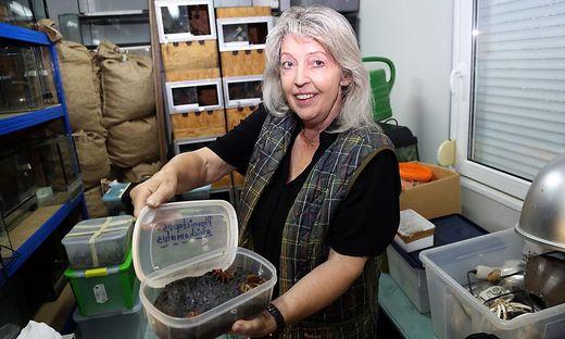 Helga Happ mit einer der drei Vogelspinnen im Originalbehältnis