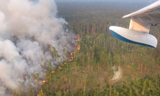 Feuer in der Nähe der Stadt Krasnojarsk