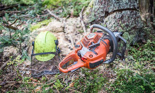 Unfall bei Forstarbeiten