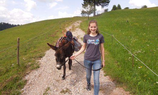 Eselwandern im südsteirischen Grenzland ist ein entspannendes Freizeitvergnügen mit hohem Erholungsfaktor