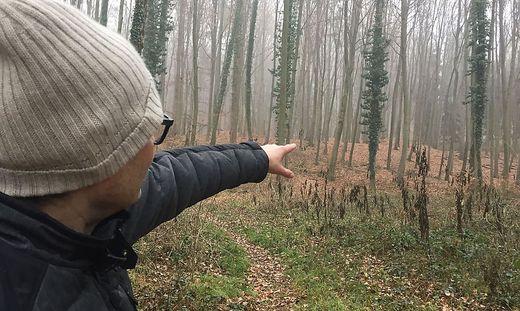 Buchkogel bei Wildon: Ein Wald voller Hügelgräber