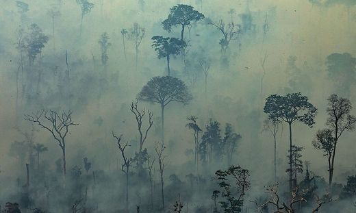 Brasilien lehnt G-7-Soforthilfe im Kampf gegen Waldbrände ab
