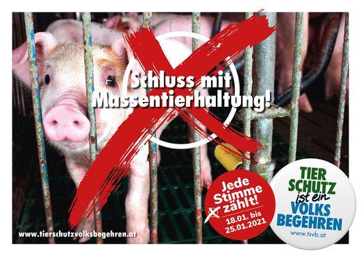 Schluss mit Massentierhaltung! Tierschutzvolksbegehren pr�sentiert Abschlusskampagne