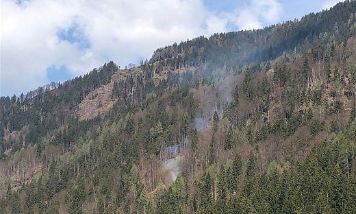 Eine Fläche von circa 40 Quadratmetern brannte