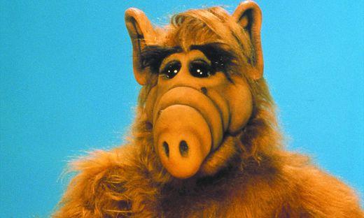 Alf kehrt wieder ins Fernsehen zurück