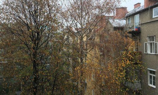 Freizeit singles in waltendorf. Dates aus frauenstein