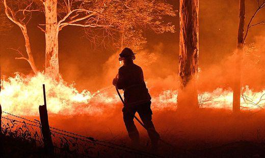 TMehr als zehn Millionen Hektar Land sind bisher verbrannt