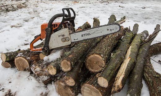 Ein 61-jähriger Mann aus dem Bezirk Völkermarkt ist am Donnerstag bei Forstarbeiten am Rechberg in Eisenkappel tödlich verunglückt (Symbolfoto)
