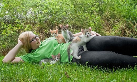 Tierpflegerin mit Kätzchen