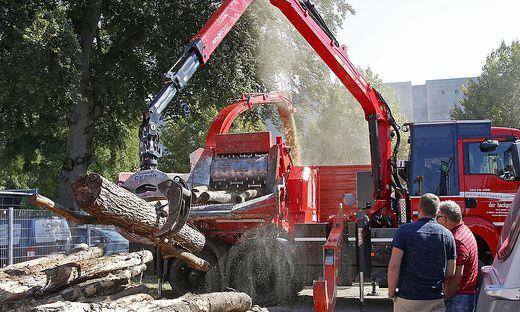 Eroeffnung holzmesse 2016 Messegelaende Klagenfurt